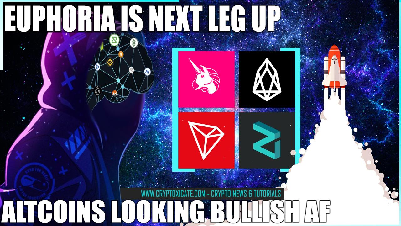 altcoins_look_so_bullish_euphoria_is_next_cryptoxicate_com.png