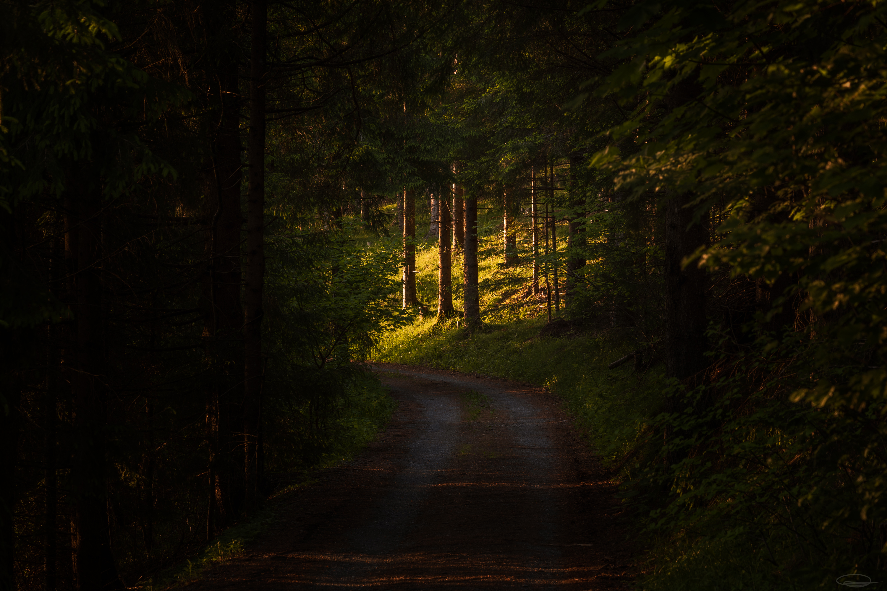 Every dark forest path ends in a clearing at some point