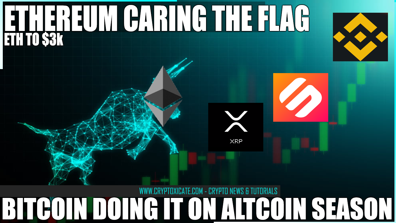 bitcoin_doing_its_thing_on_altcoin_season_ethereum_leading_the_way_cryptoxicate_com.png