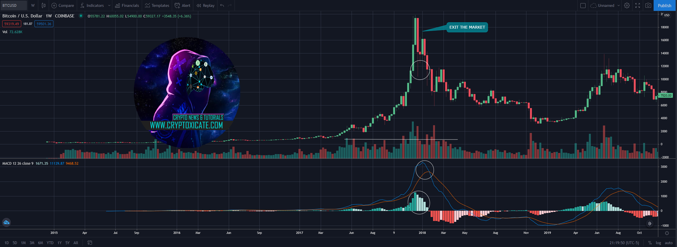 004_big_hive_price_action_looking_better_when_crypto_market_top_cryptoxicate_com.png