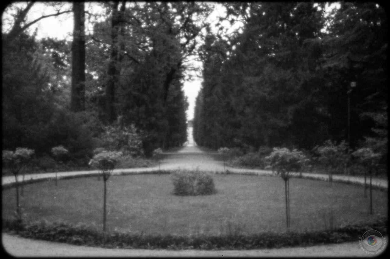 Mausoleum Garden