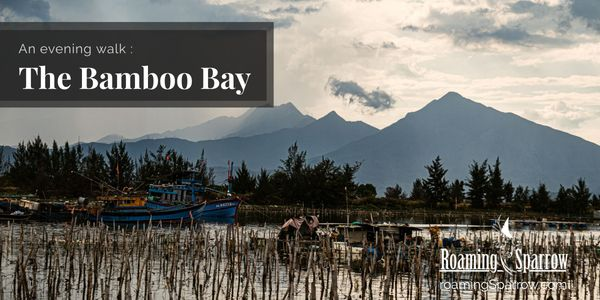 An Evening Walk : The Bamboo Bay (5 Original Photos)