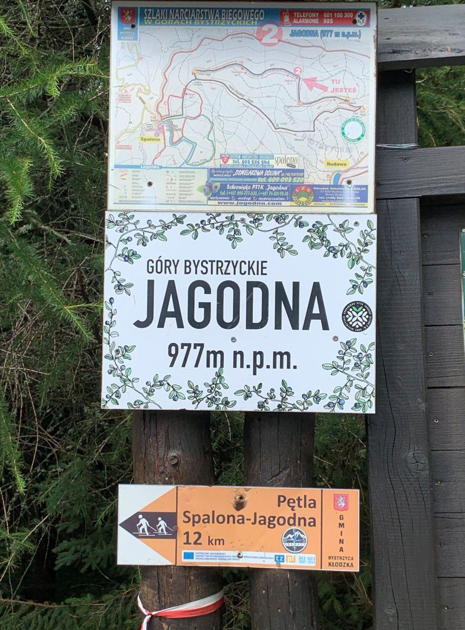 """Jagodna, 977m. Szczyt dla """"turystów"""""""