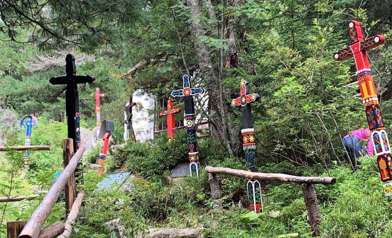 Kolorowe krzyże na symbolicznym cmentarzu