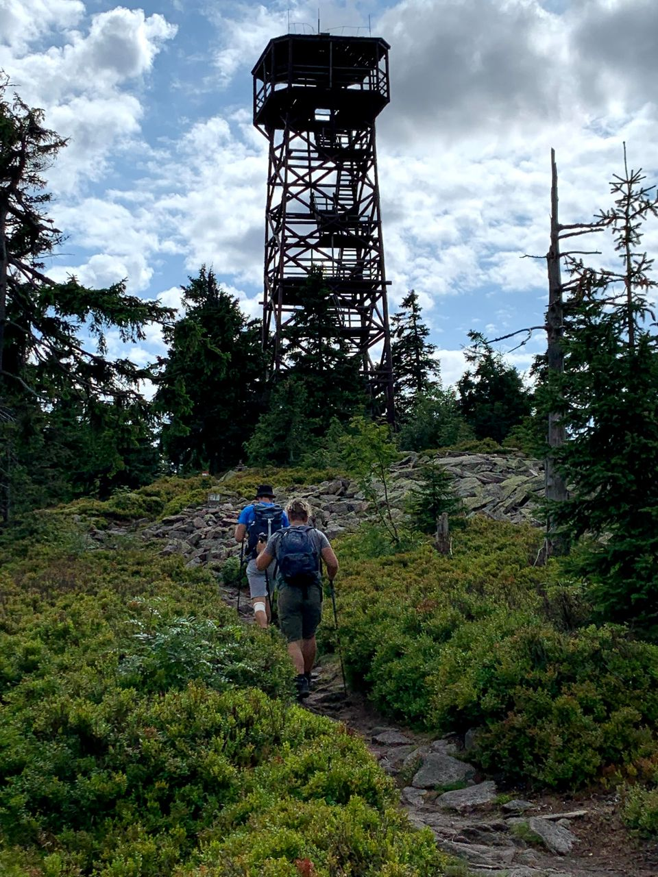 Włóczykije i wieża widokowa na Trójmorskim Wierchu