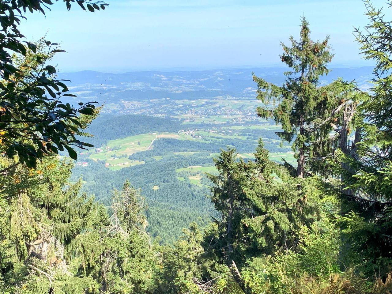 Widok ze szczytu Mogielicy
