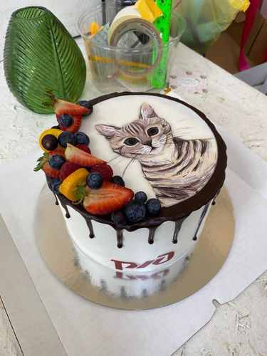 I drew a kitten on the cake =) I paint art on the cake. Decorating the cake.
