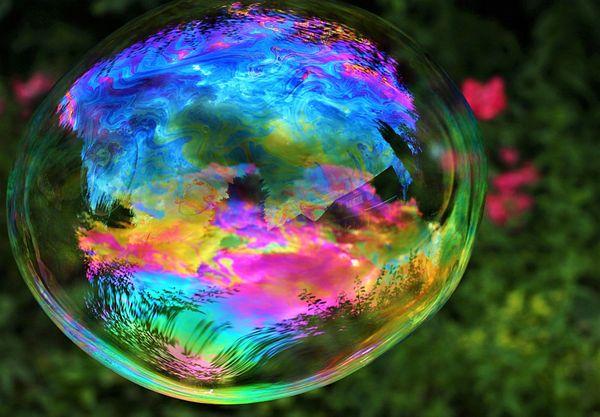 Qurator's Photo Quest | Color Splash Photography!