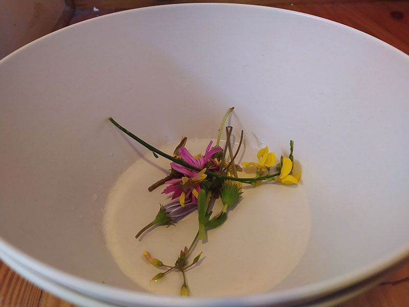 Foot Spa Flower Bowl.jpg