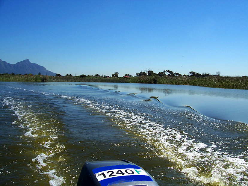 The vlei during the day2.png