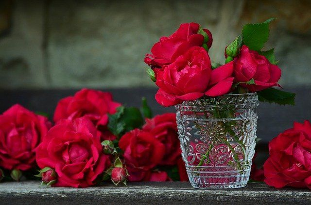 roses-821705_640.jpg