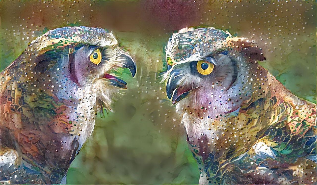 polka-pastel-owls.jpeg