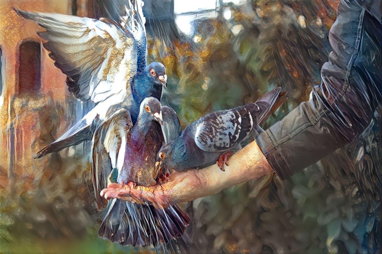 flux-pigeons-on-hand.jpeg