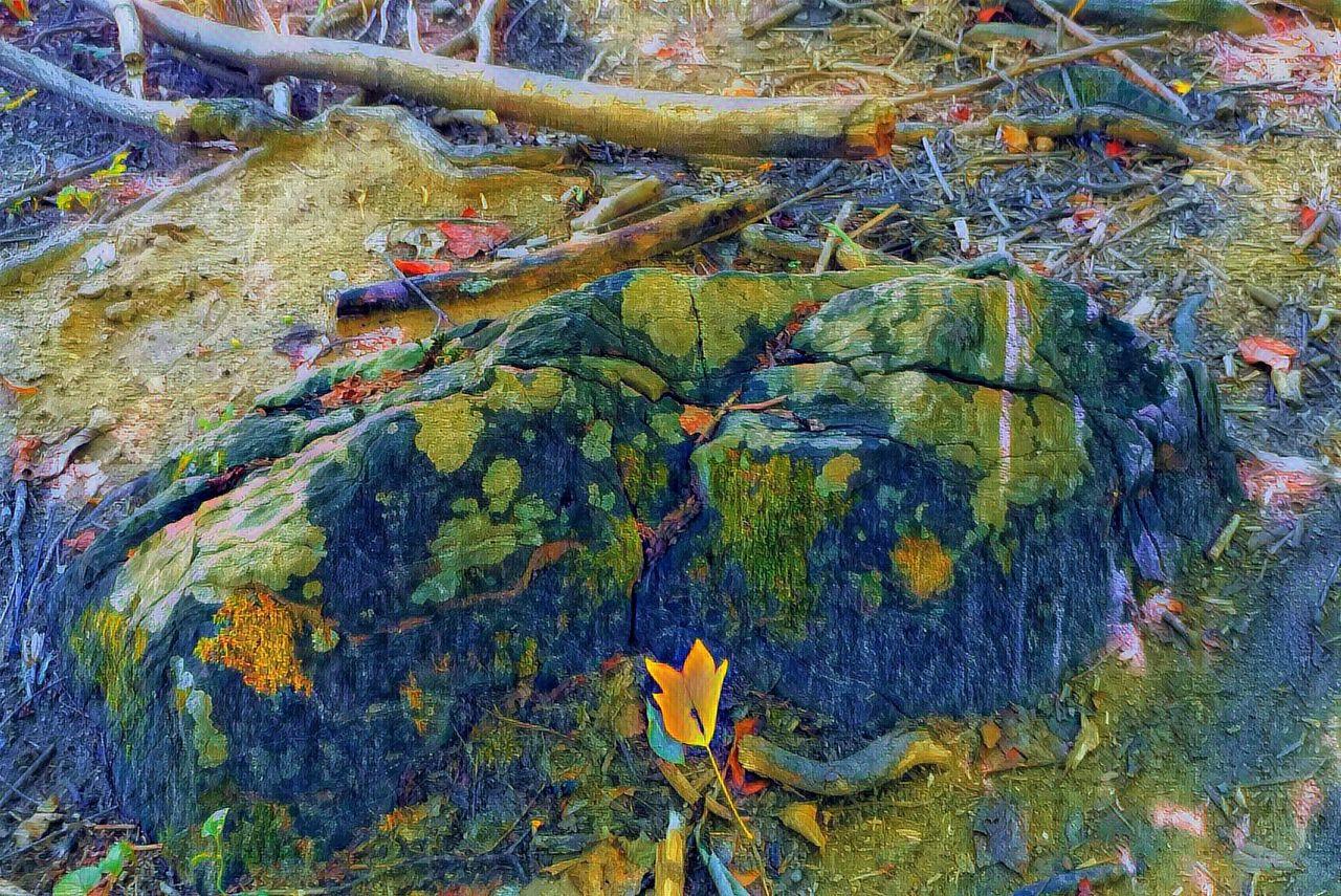 bouldersunday8-29-2021-12ok.jpg