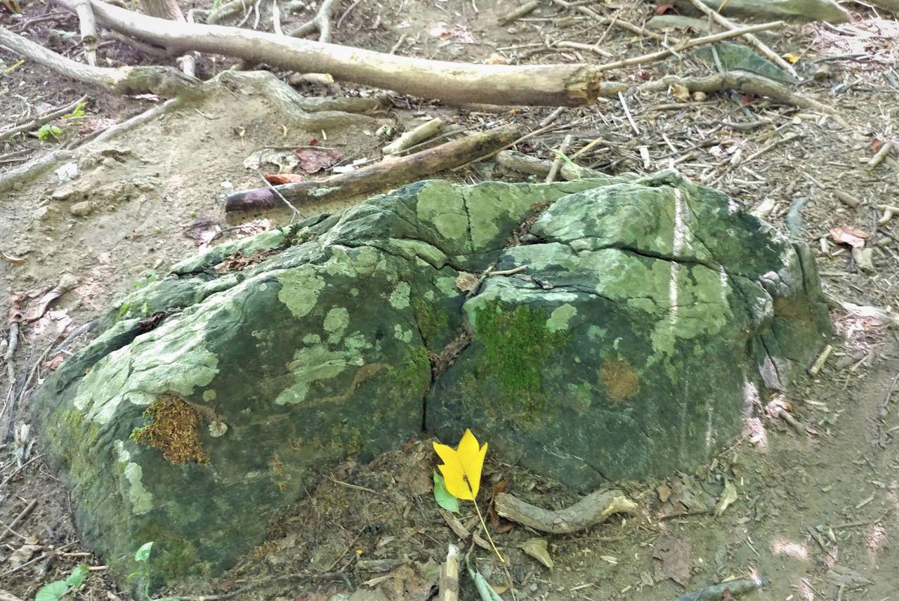 bouldersunday8-29-2021-11ok.jpg