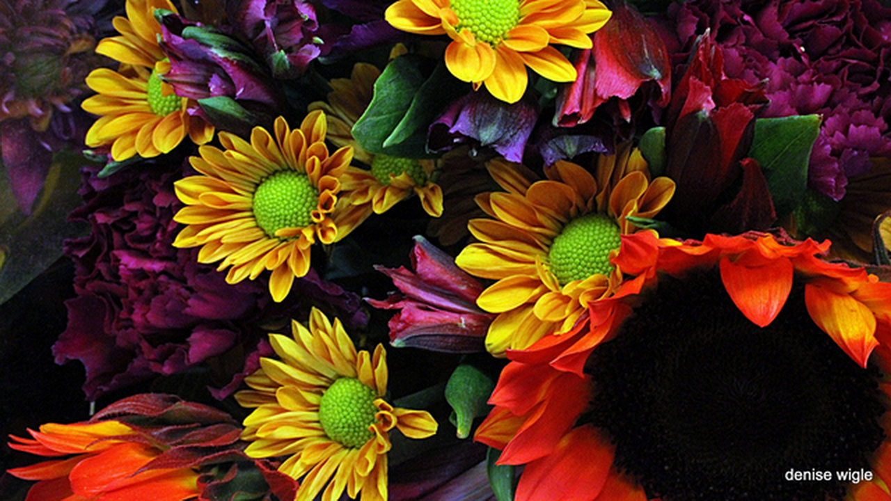 flowers in autumn.png