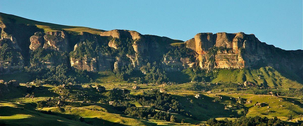 AlpineHeath mountain.jpg