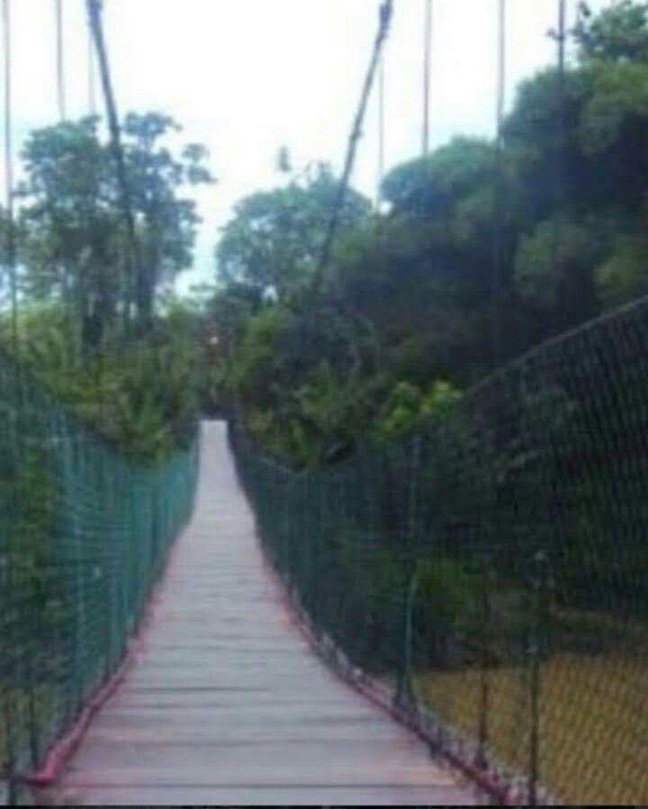 puente panaquire.jpeg