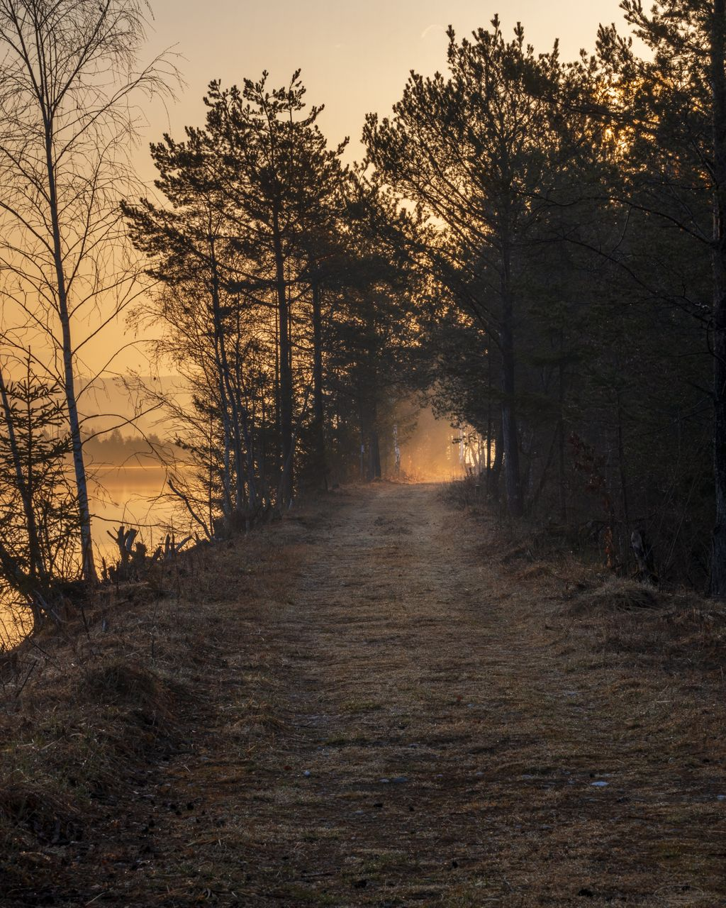Path to Retirement - Light at the end of the Tunnel