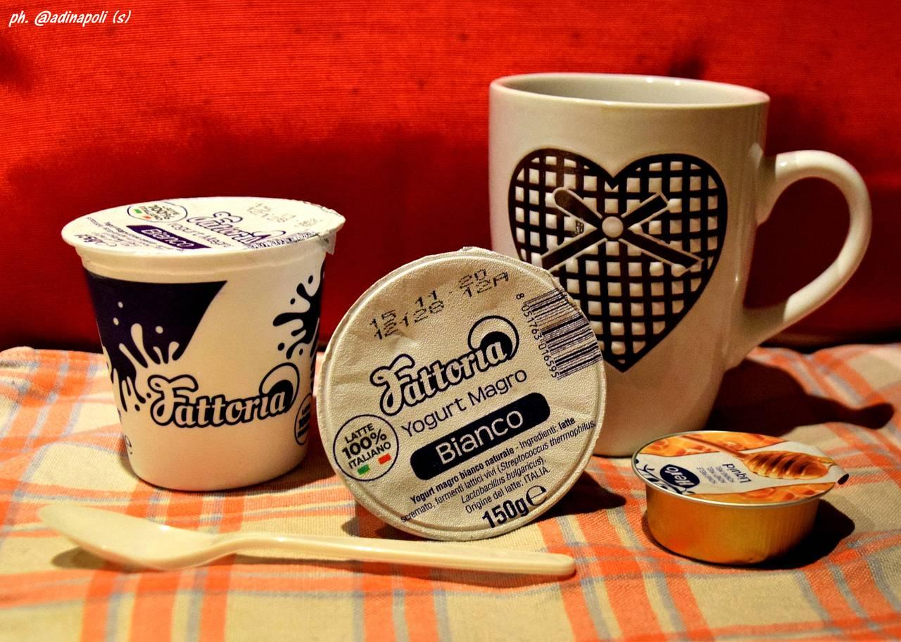 yogurt_yogurt.jpg