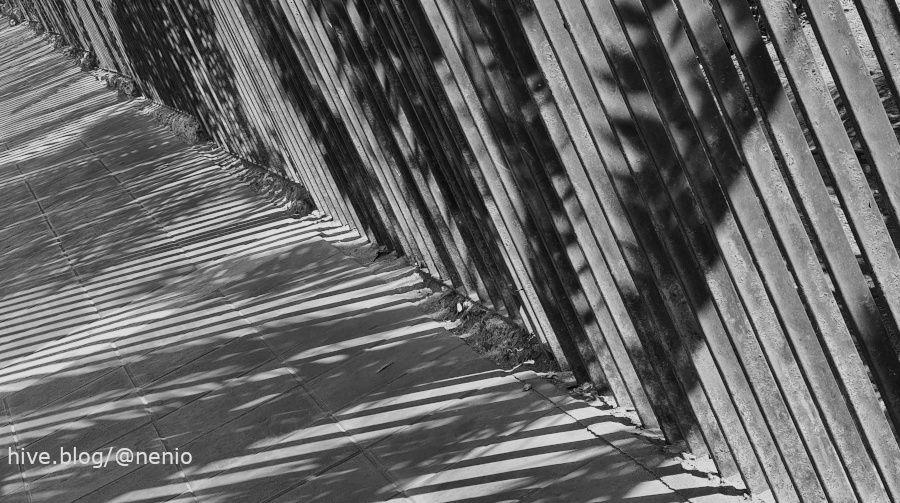shadows-001-bw.jpg
