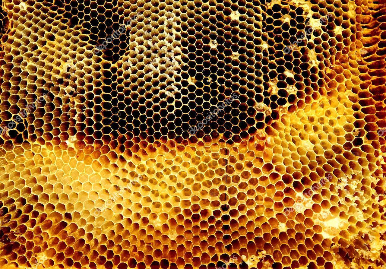 depositphotos_200213180_stock_photo_background_hexagon_texture_wax_honeycomb.jpg