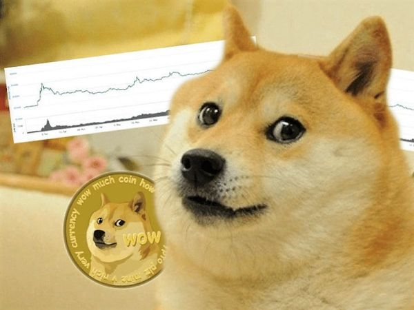 What To Make Of DOGE