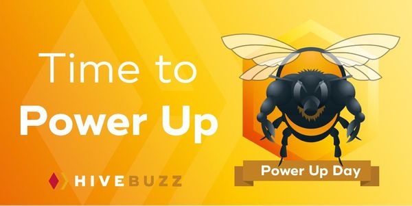 Feedback from the last Hive Power Up Day