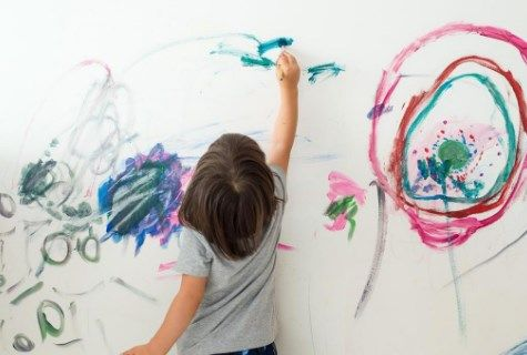 Is it born or created? creativity in the human being