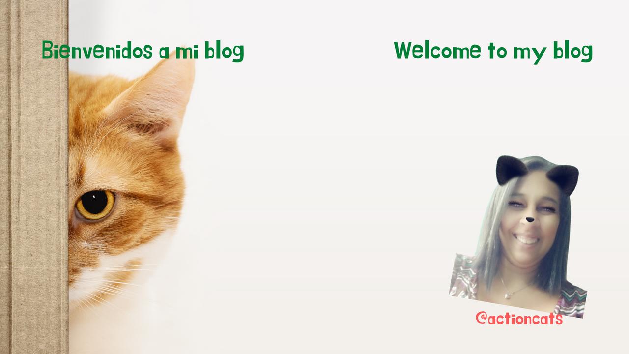 Bienvenidos a mi blog 2 idiomas nuevo.png