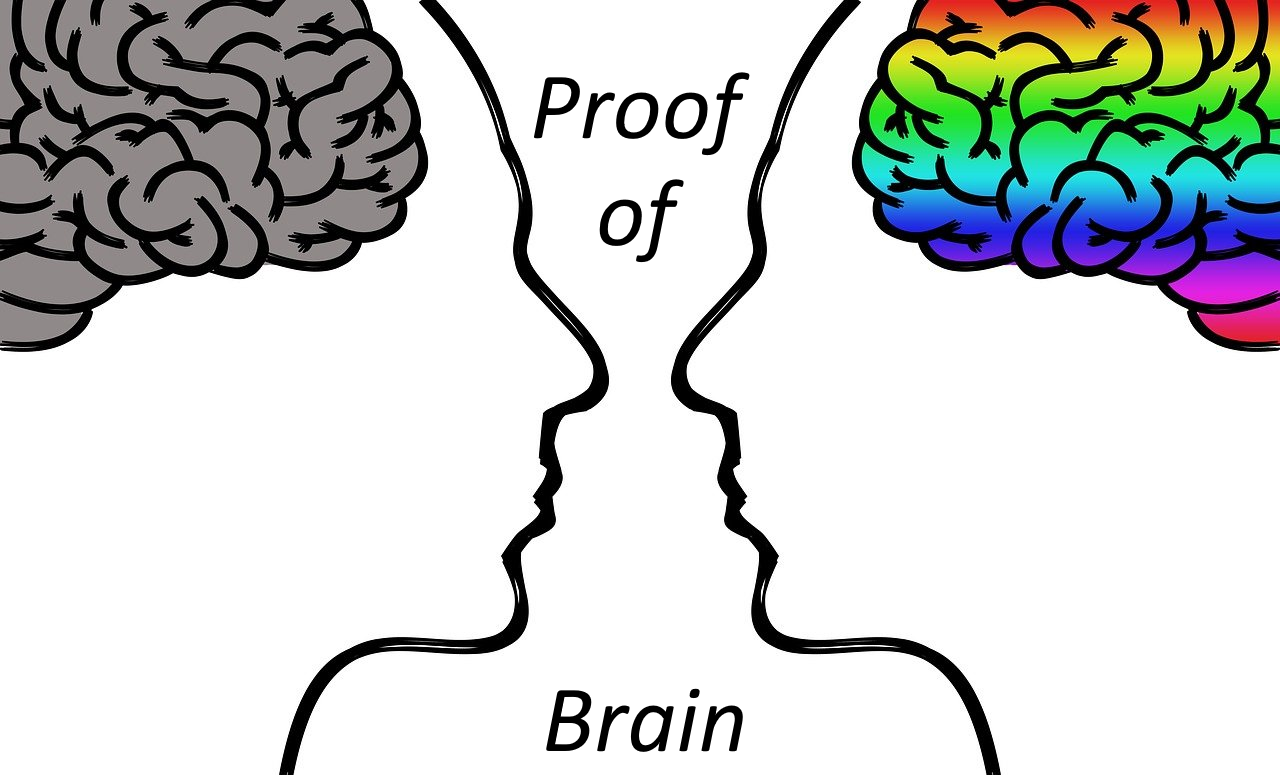 proofofbrain.png