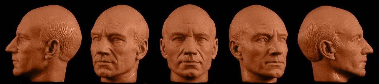 Jean-Luc Picard sculpt turnaround