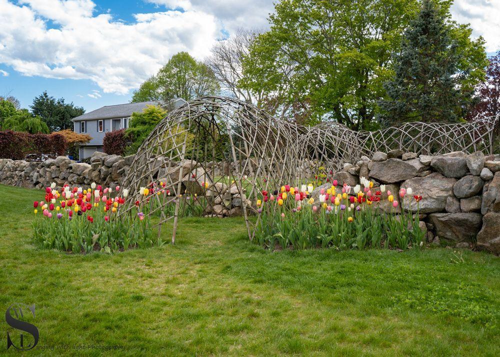 Kaskell gardens-3.jpg