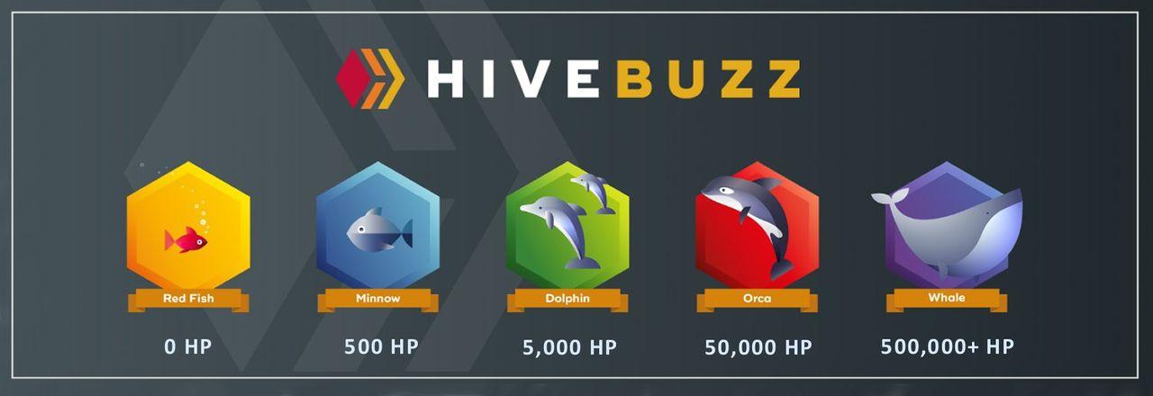 HiveBuzz-Rankings (1).jpg