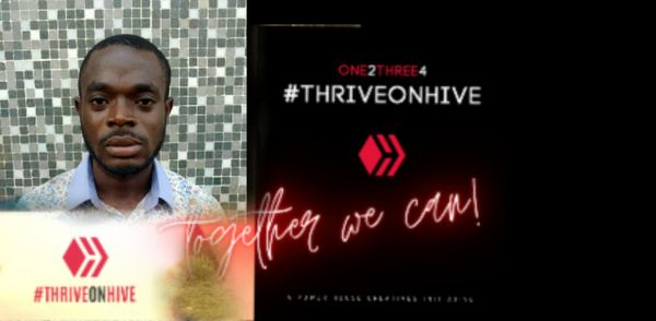 My Five For #Thriveonhive By @Amudachris