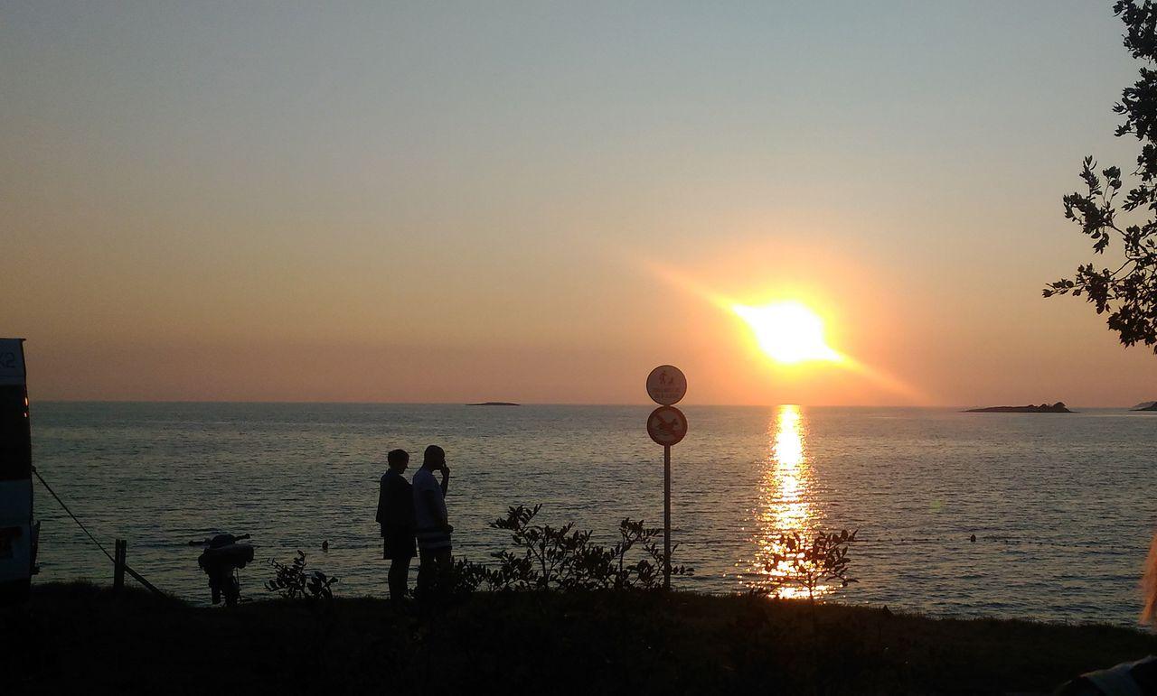 suns1.jpg