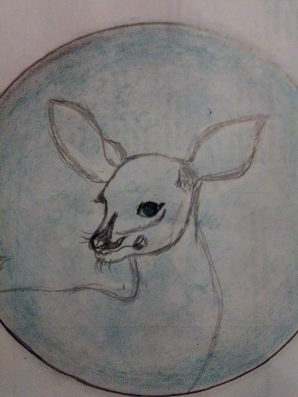 bambi4.jpg