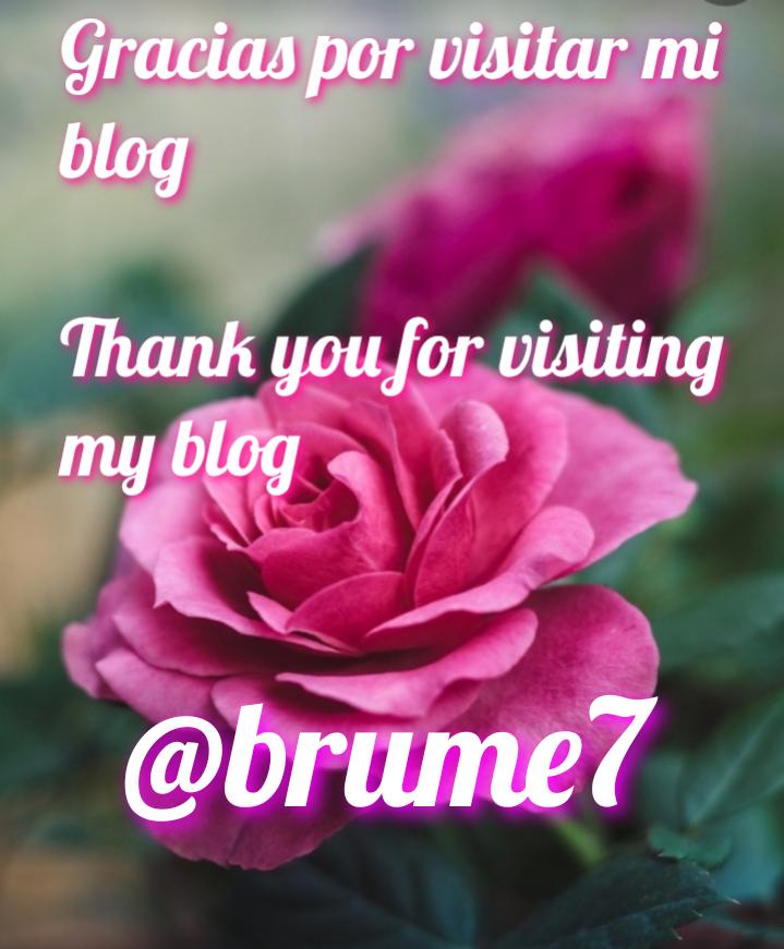 brume7.png