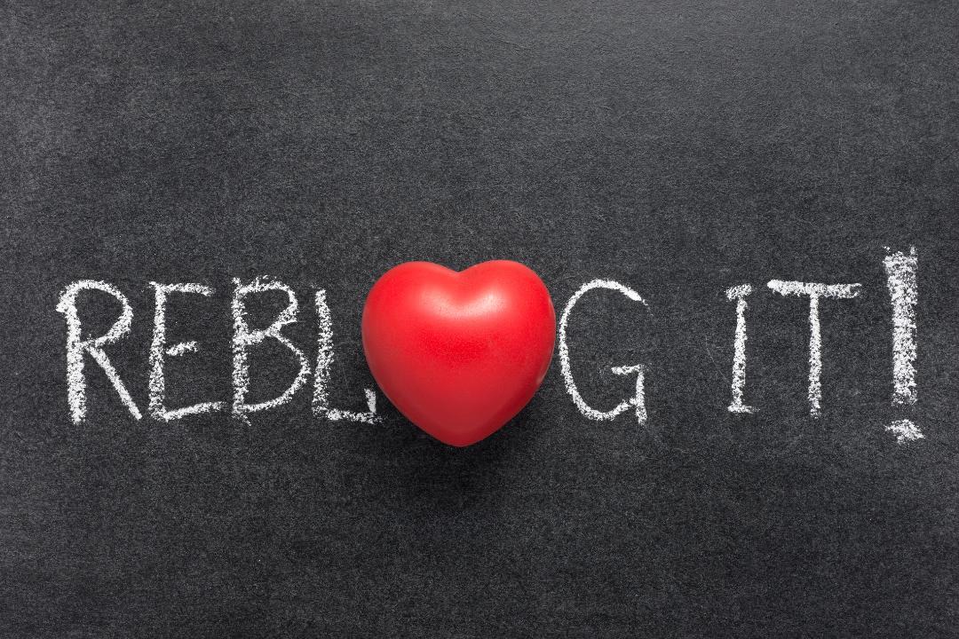 reblog.png