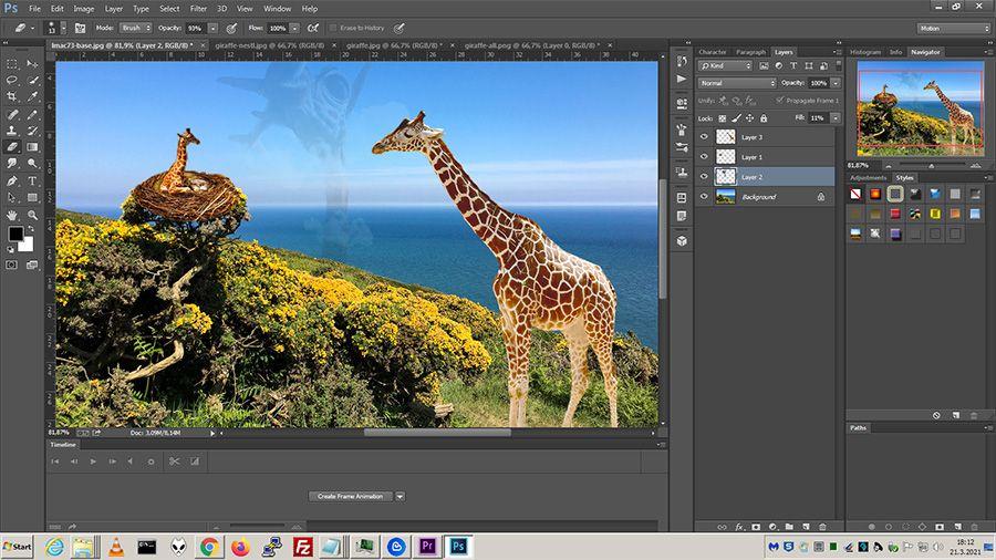 lmac73_photoshop.jpg