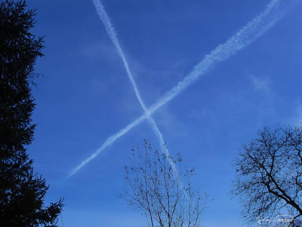 Hive AlphabetHunt X-clouds