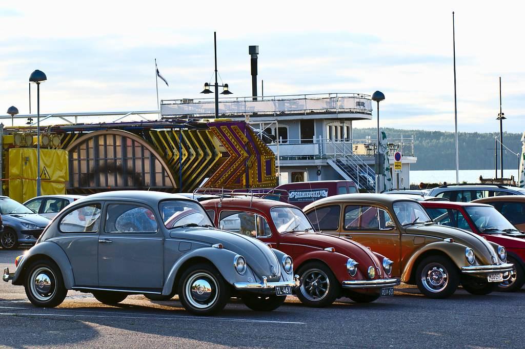 One photo every day: Three Beetles (64/365)