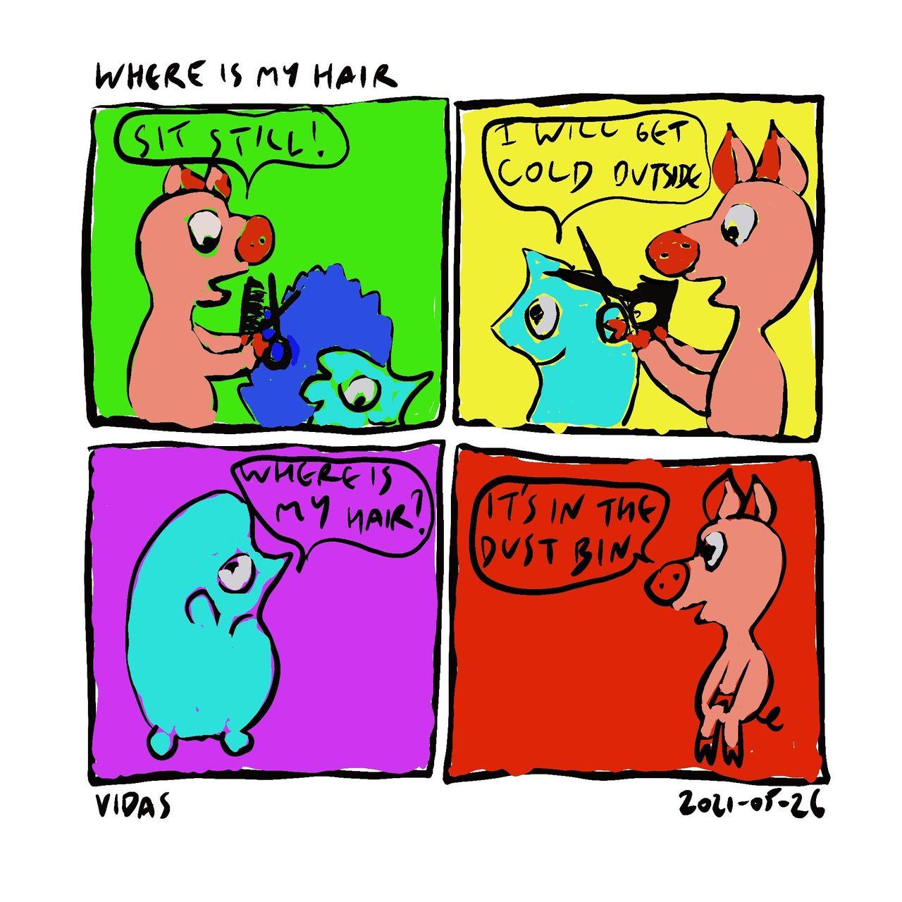 Where_Is_My_Hair.jpg