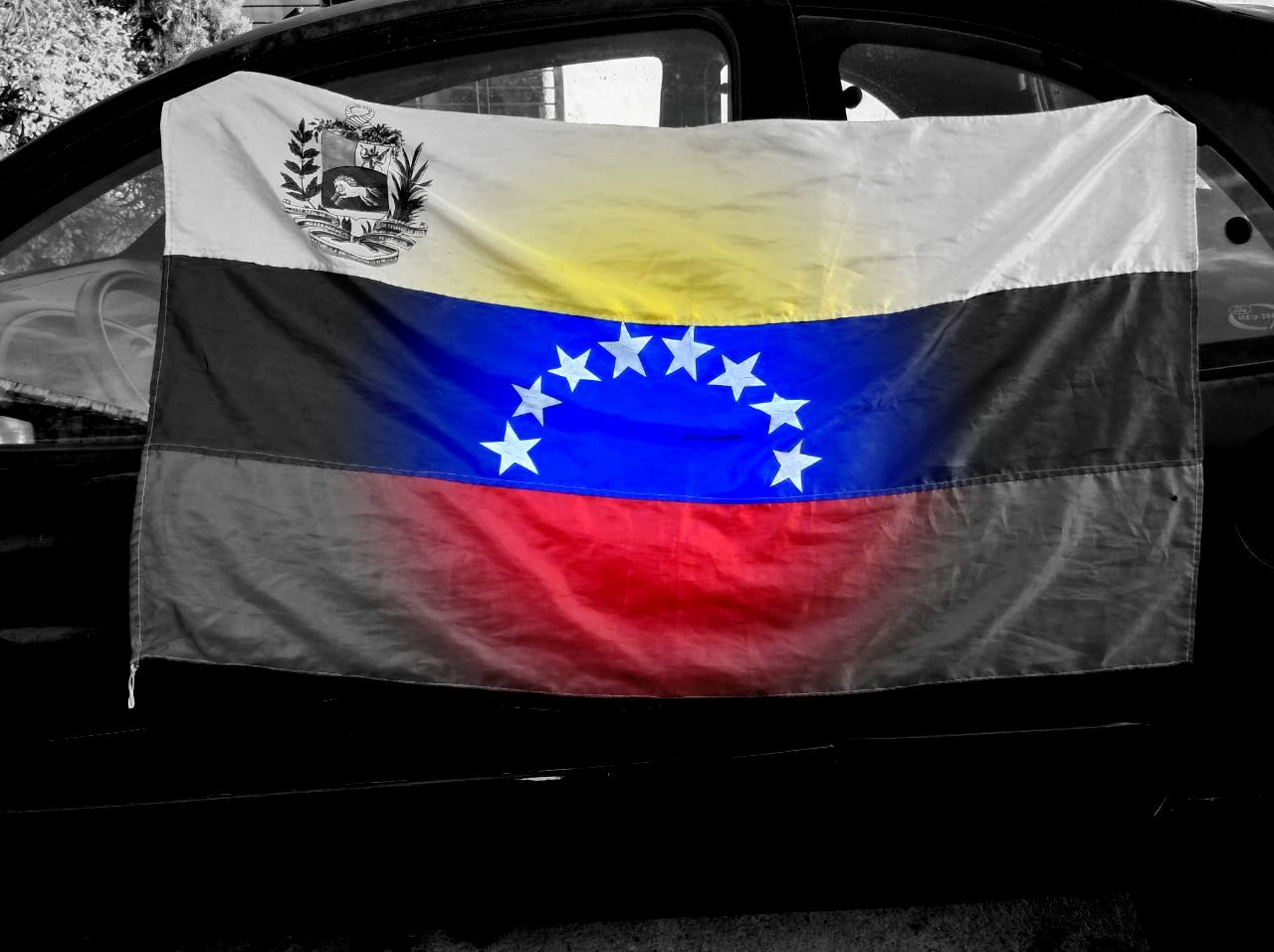 bandera lulu.jpg