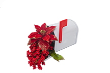 poinsettia mailbox small.png
