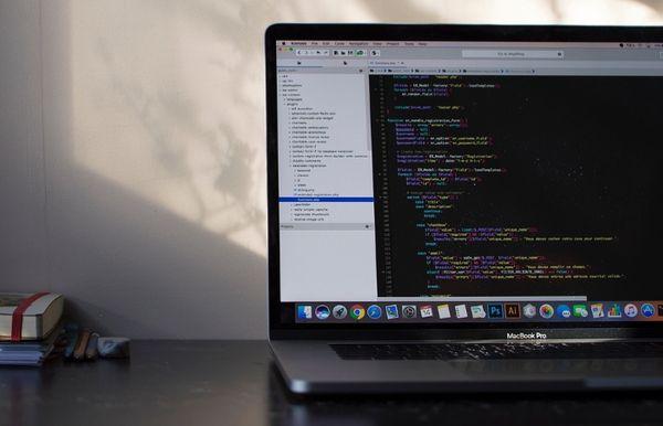Profiling White-Hat Vulnerability Researchers
