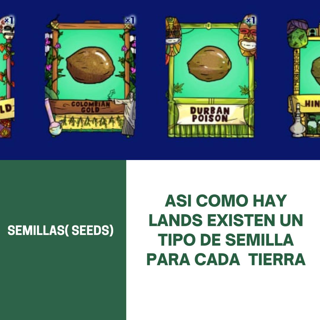 TIERRAS(LANDS) (1).png