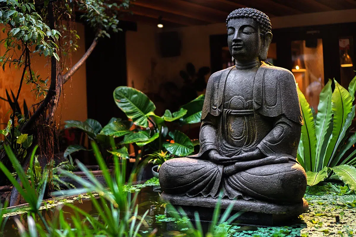Garden café, a place where you can find your own peace.
