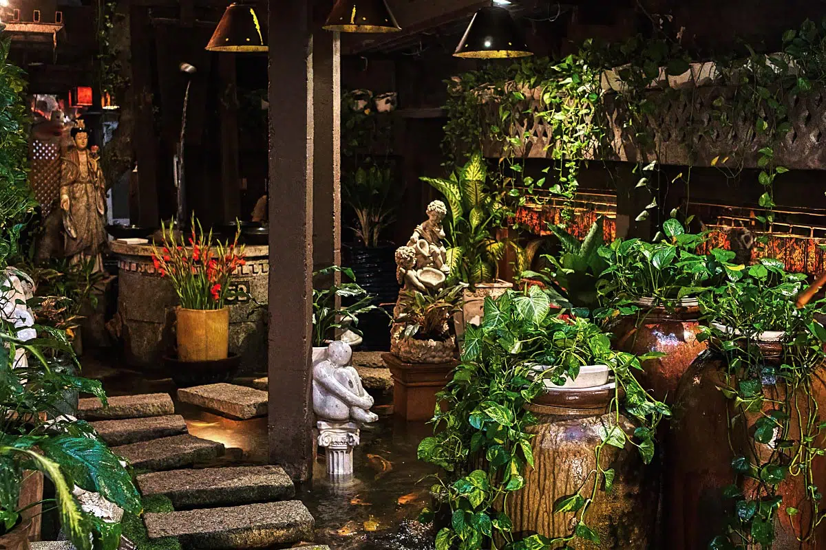 Garden Café is a café where the whole place is decorated as a garden or a greenhouse.