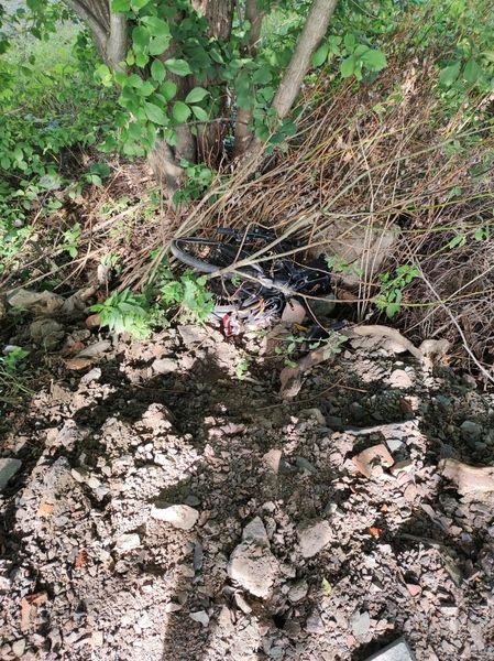 Bike found in some bushes